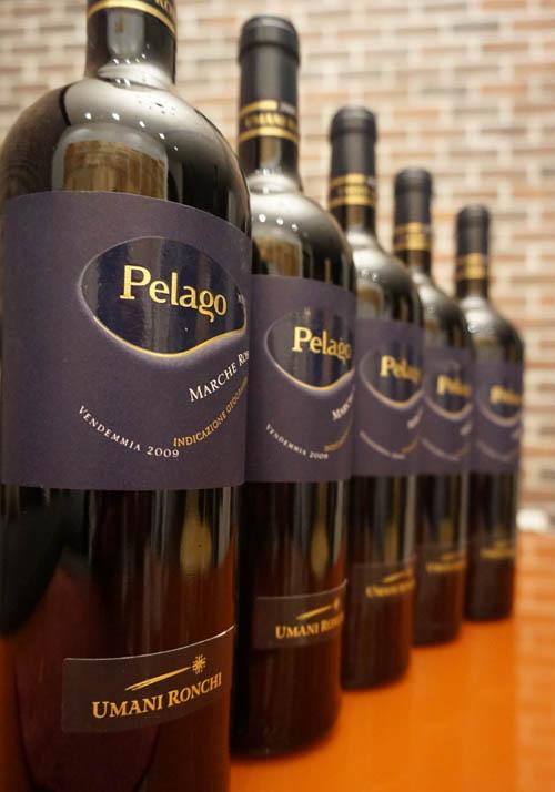 Peloag-5