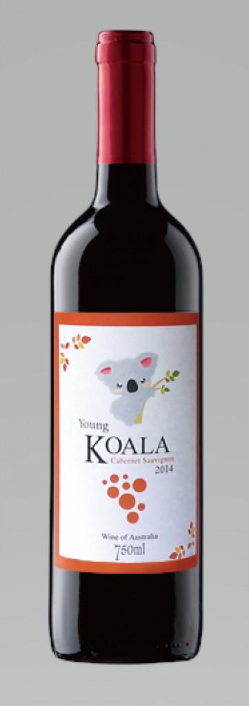 Young koala Cabernet Sauvigno